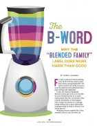 Stepfamily Information Blended Families
