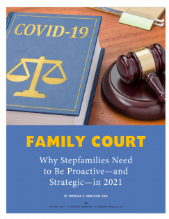 Stepfamily Court
